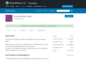 Webdesigner freelance plugin WordPress Custom Body CSS